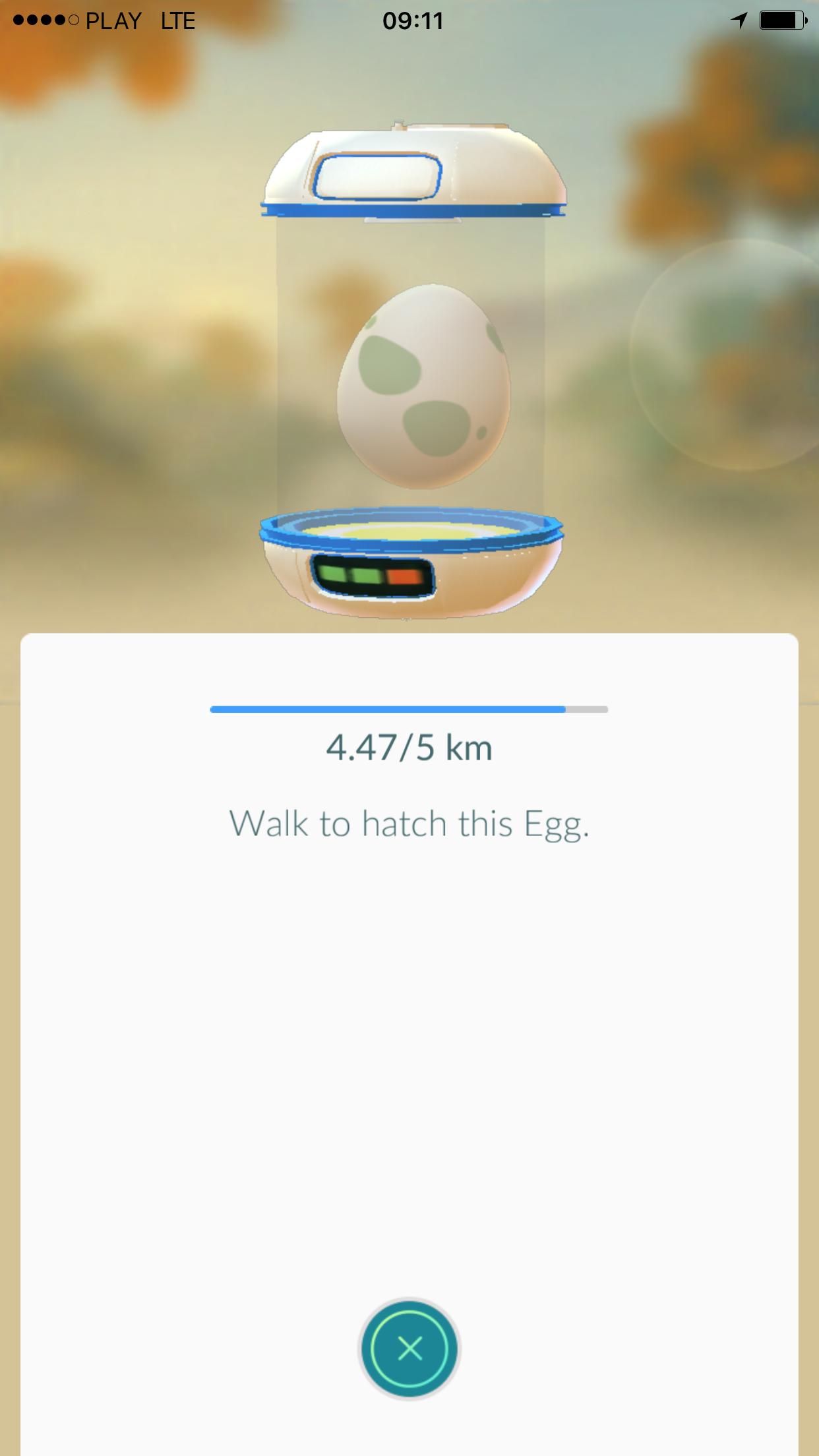 Egg pokemon - Pokemon GO